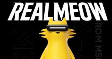 Ini Dia realmeow, Designer Toy dari realme